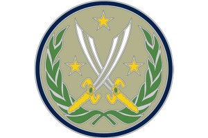 US Army's Combat Patch for ISIS Conflict Draws Flak over Design